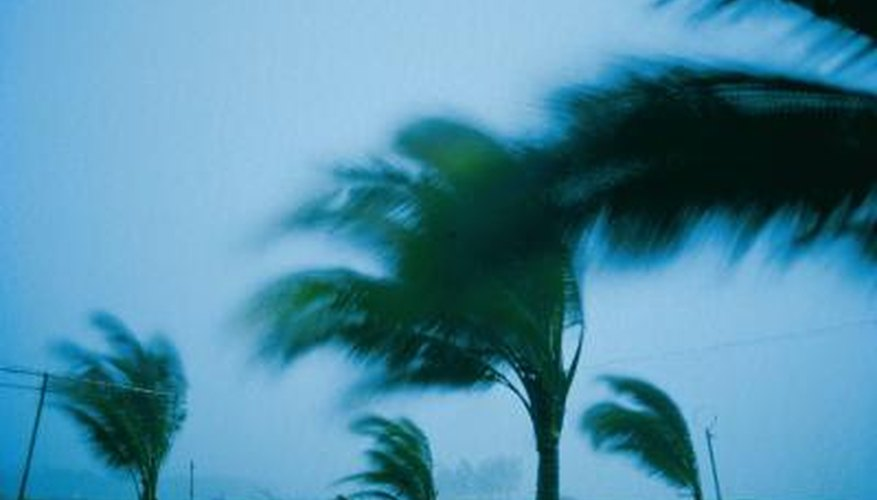 Protect your home and family from hurricane-force winds with hurricane windows.