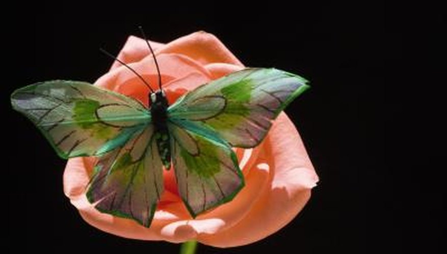 Butterflies and other animals play an important role in the growth of flowers.