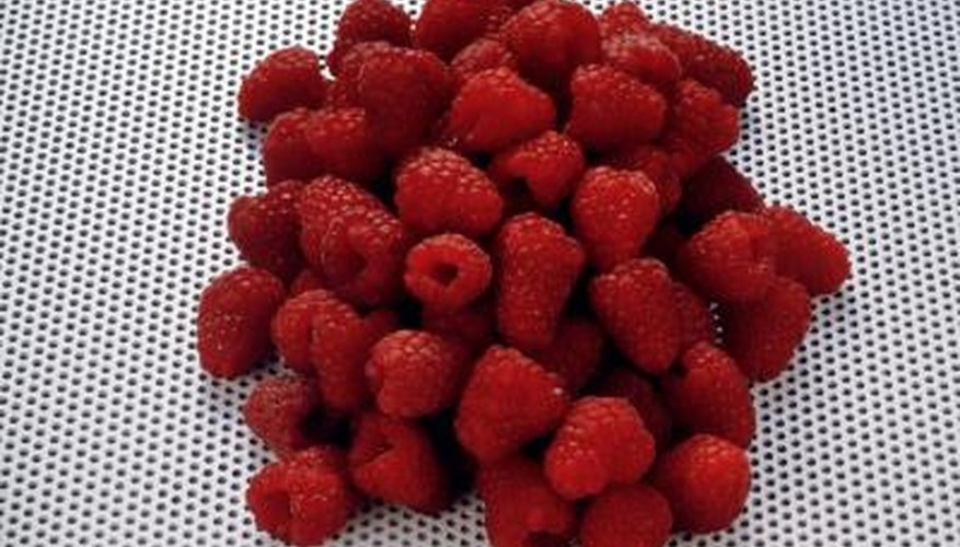 A group of raspberries grouped together show off their bright and enticing colors