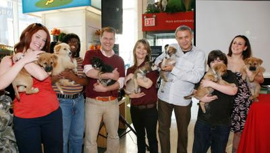 Animal activsts holding dogs at a fundraising event.