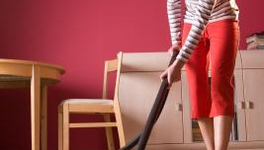 Most standard vacuum cleaners can generally get the job done.