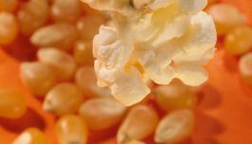 Special varieties of corn produce kernels with different properties.