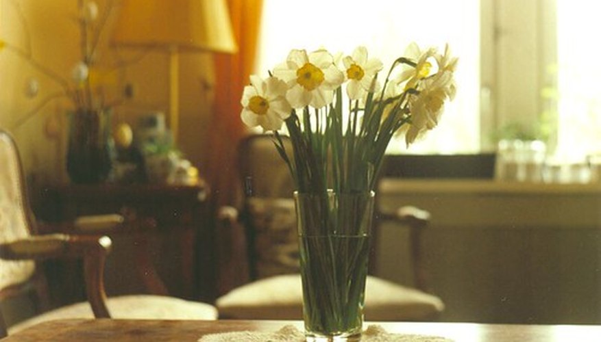 Daffodils make beautiful cut flowers.