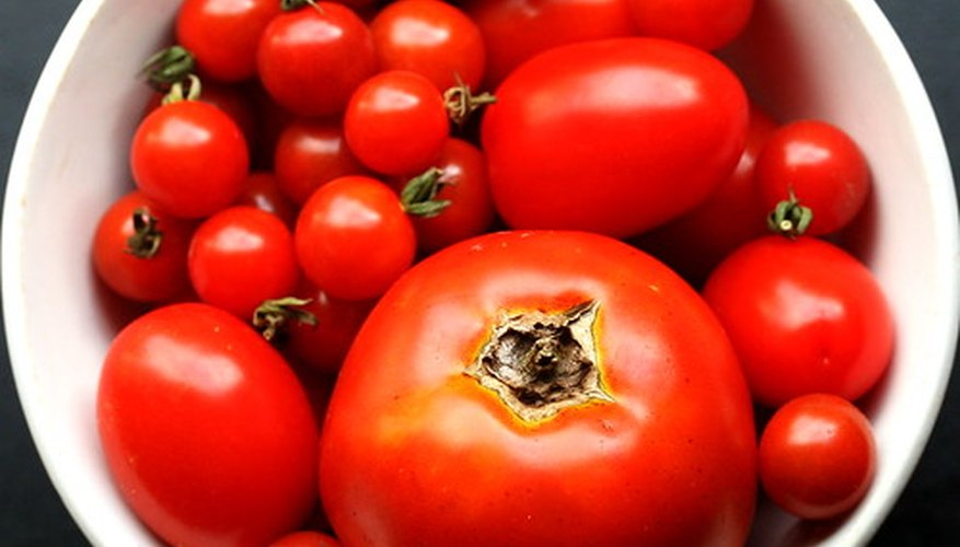 Tomatoes are a hydroponic crop.