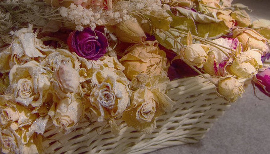 The History Of Drying Flowers Garden Guides