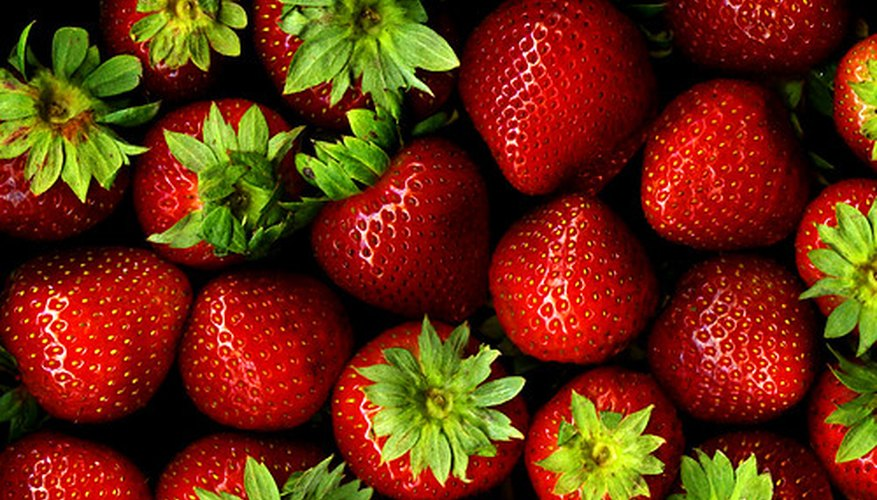 Strawberry plants produce fruit quickly.