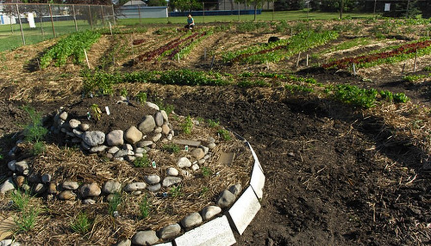 Plant a circular raised bed garden.