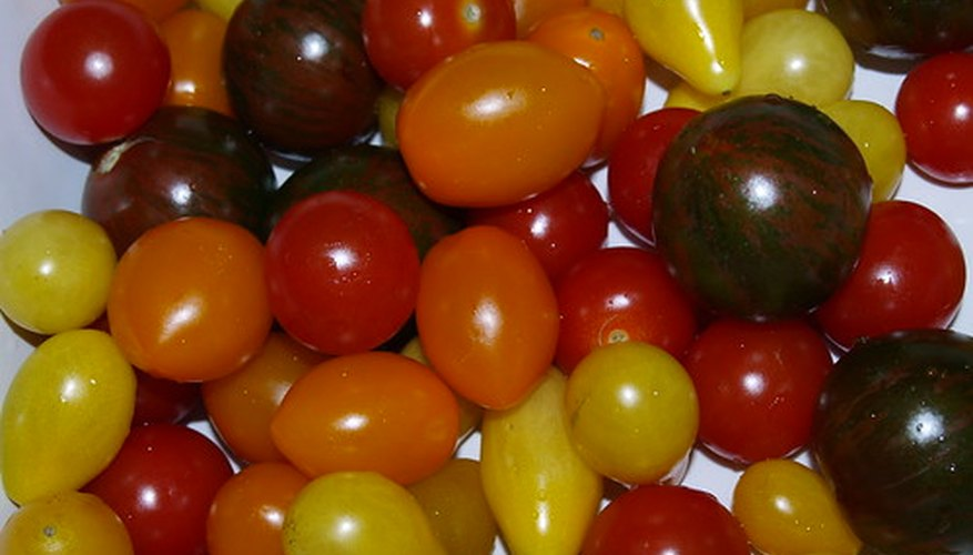 Many tomato varieties are F1 hybrids.