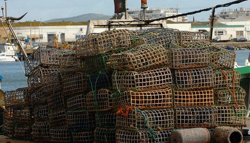 La pesca se convierte en un problema cuando se agota el suministro de pescado.