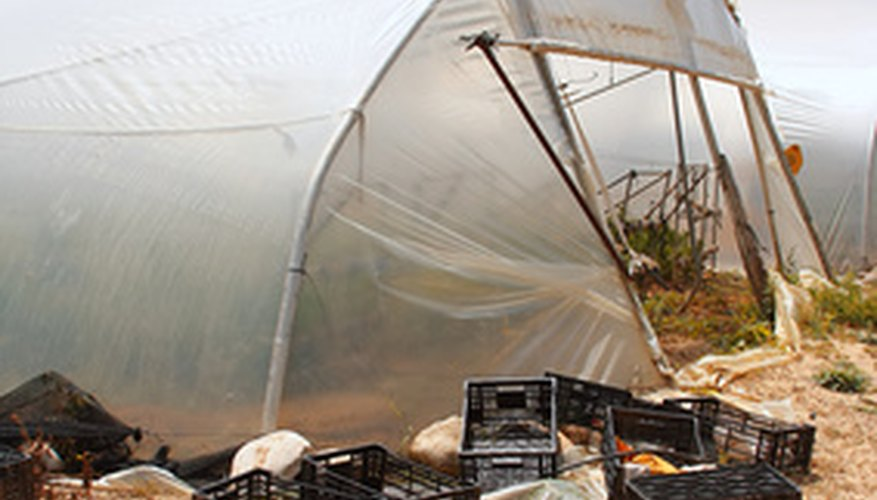 A translucent cover diffuses light in a greenhouse.