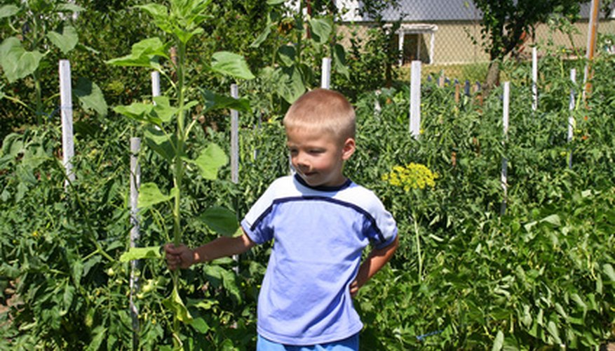 Gardening is a great family activity in Utah.