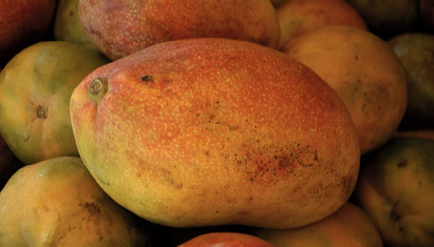 Mango is a delicious subtropical fruit.