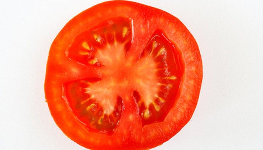 Anatomy of a Tomato Plant | Garden Guides
