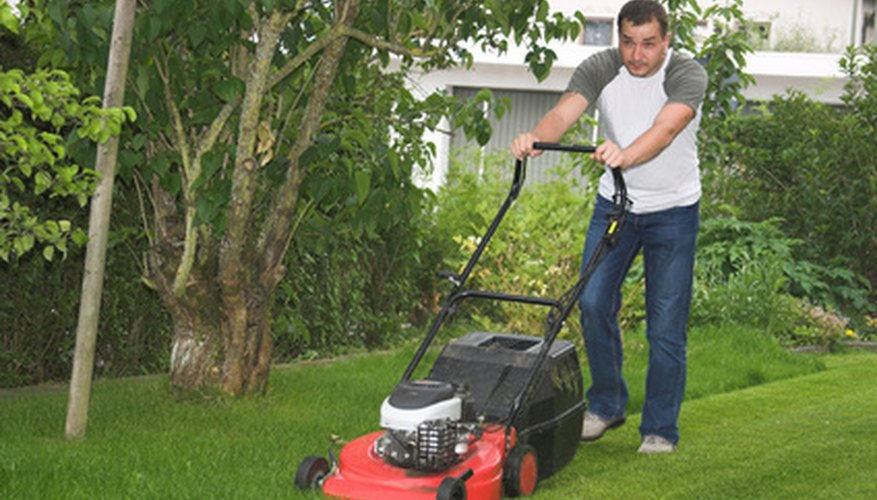 Remove the lawn mower blade to sharpen it regularly.