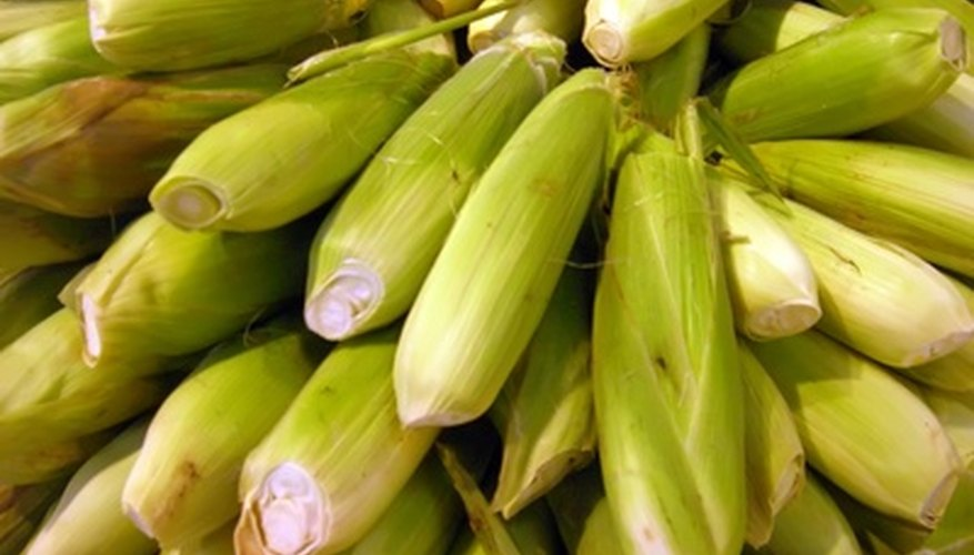 Awesome sweet corn seed has a high sugar content