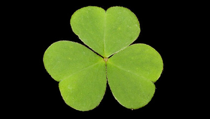 The shamrock is a symbol of Ireland.