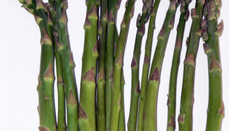 Healthy asparagus plants ensure many harvest years.