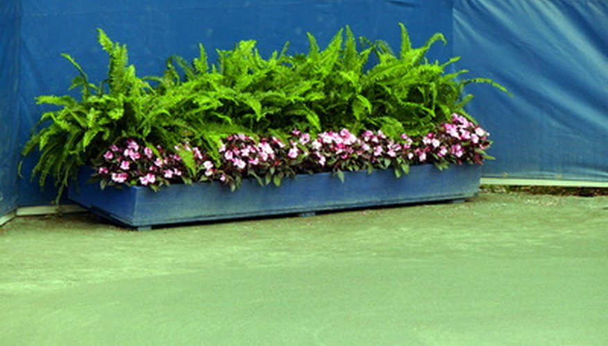 Fill planter boxes with attractive flowers for a landscape display.