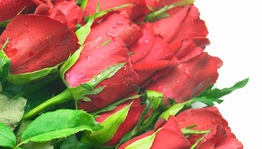 Red roses are a token of love.