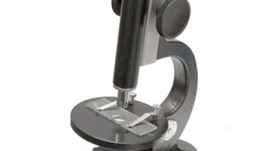 Qué son los microscopios de luz.