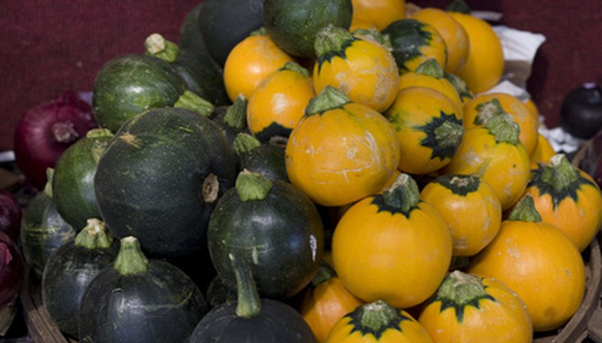 Saving seed from squash and pumpkins saves money.