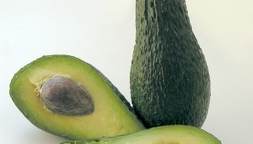 Protect your avocados from threats.