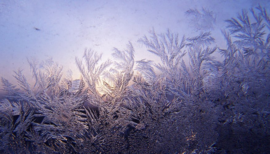 Frost seriously affects your garden's health.