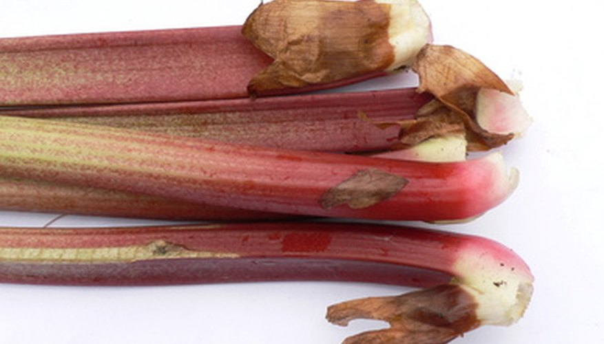 Plant rhubarb in containers instead of in the soil.