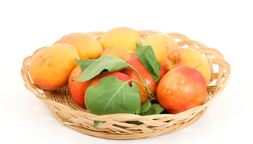 Apricots and peaches can only cross-pollinate with other varieties of apricots and peaches.