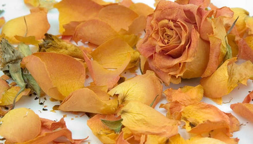 Fragrant dried rose petals have many uses.