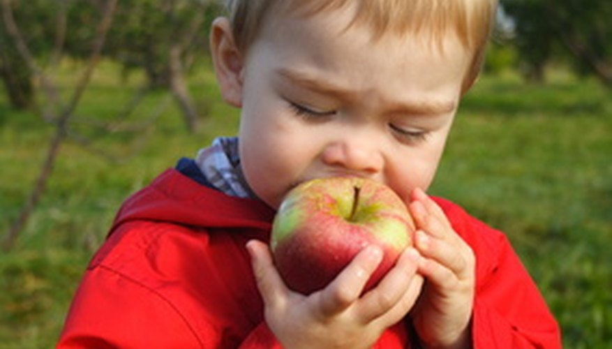 Apples are a healthy food idea for toddlers