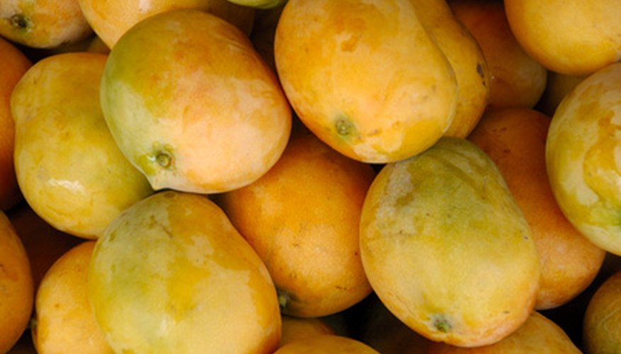Mango is the national fruit of India that is available only in the summer, locally.