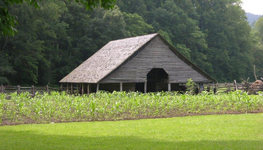 El conocimiento, la habilidad y la capacidad de adaptación son claves para dirigir una pequeña granja.