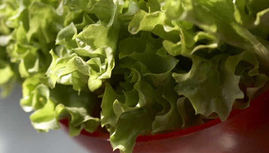 Lettuce is an easy vegetable for containers.