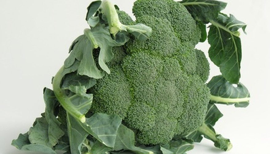 Grow broccoli in low-lit areas of your garden.