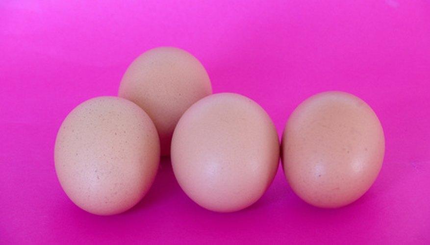 Consigue varios huevos.