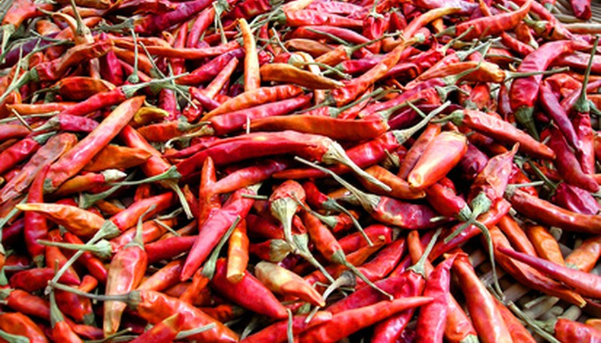 Chili peppers are hot but not near as hot as some other peppers.