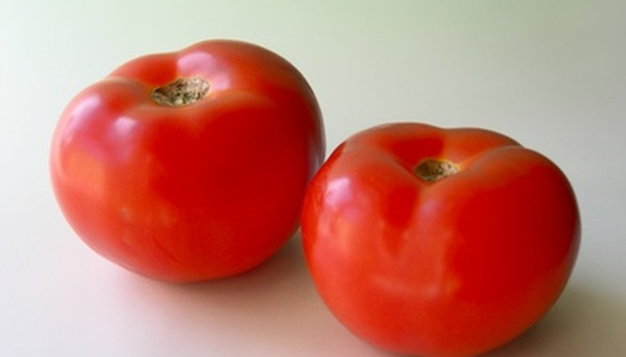 Healthy tomatoes come from healthy plants.