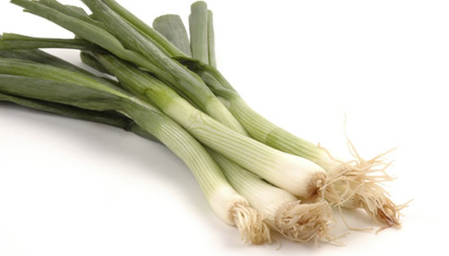 Onion sets often grow into green onions.