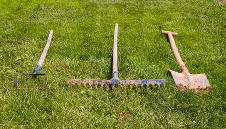 Common gardening tools.