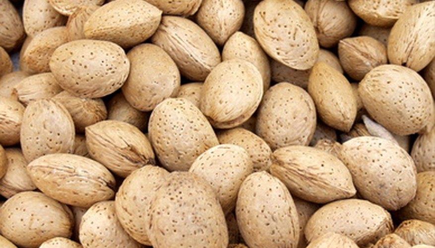 Almonds are a rich source of Vitamin E.