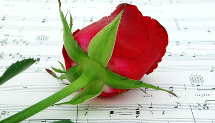 La música clásica tiene un efecto positivo en el crecimiento de las plantas.