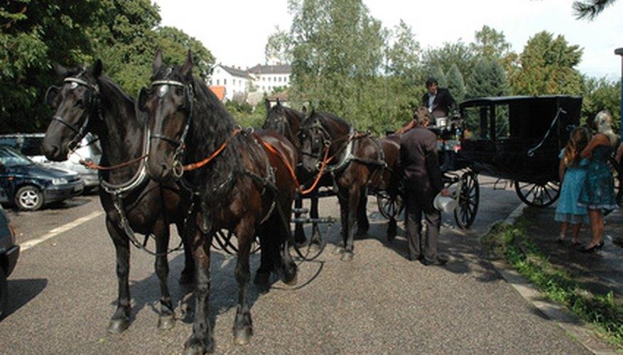 Los carros tirados a caballo aún se usan en muchos pueblos y grandes ciudades.