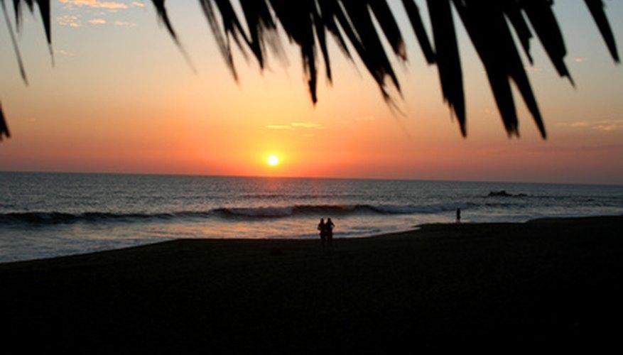 El condado de Palm Beach ofrece un ambiente tropical para un campamento.