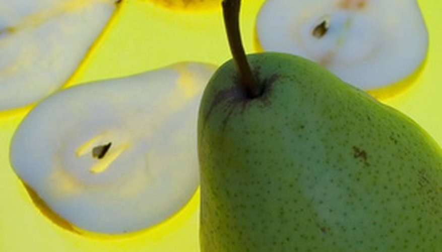Anjou pears are squat, with smooth, green skin.