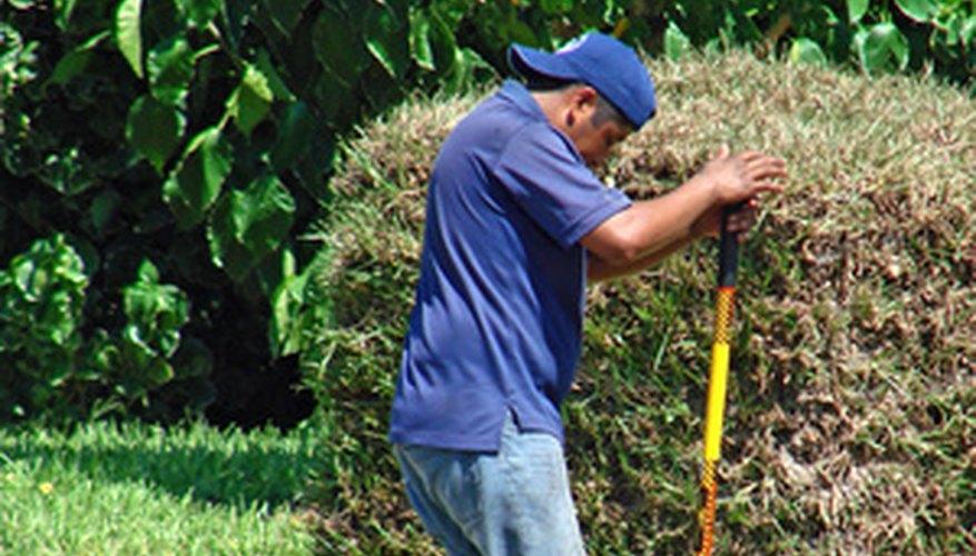 Una excavadora de hoyos que se fija al tractor ahorra tiempo y dolores musculares.