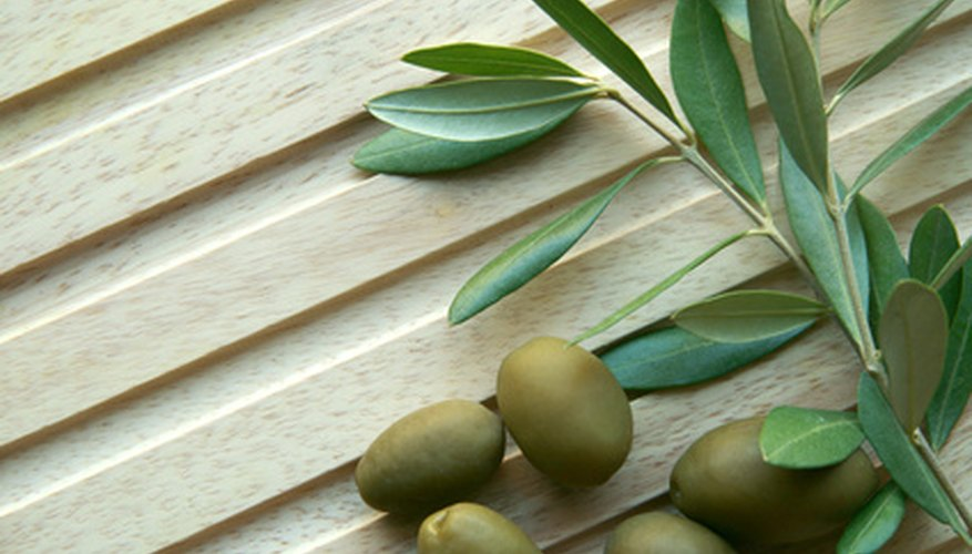 Olives begin their lives as flowers.