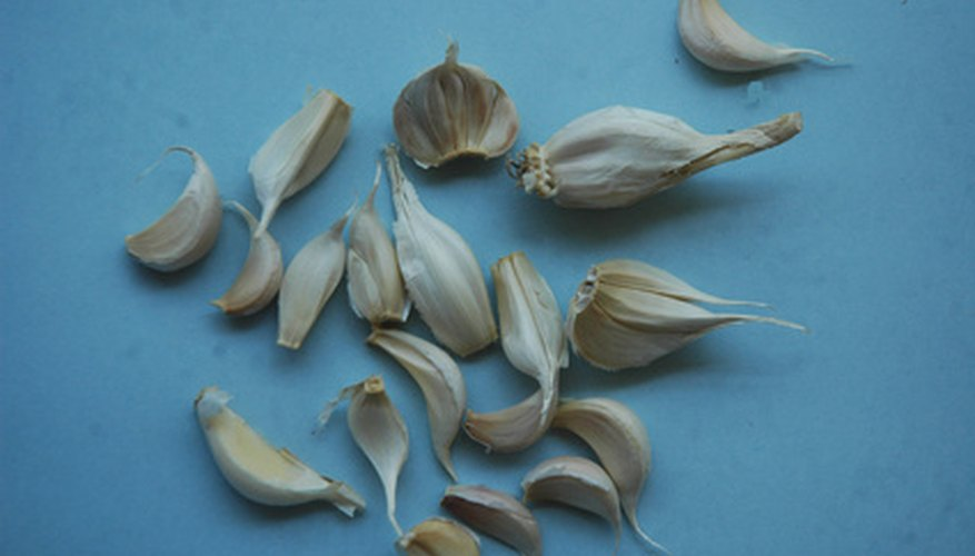 Garlic cloves.
