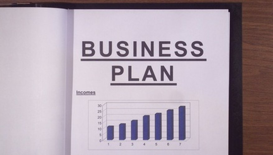 The business plan provides an overview of the marketing plan and every aspect of a business.