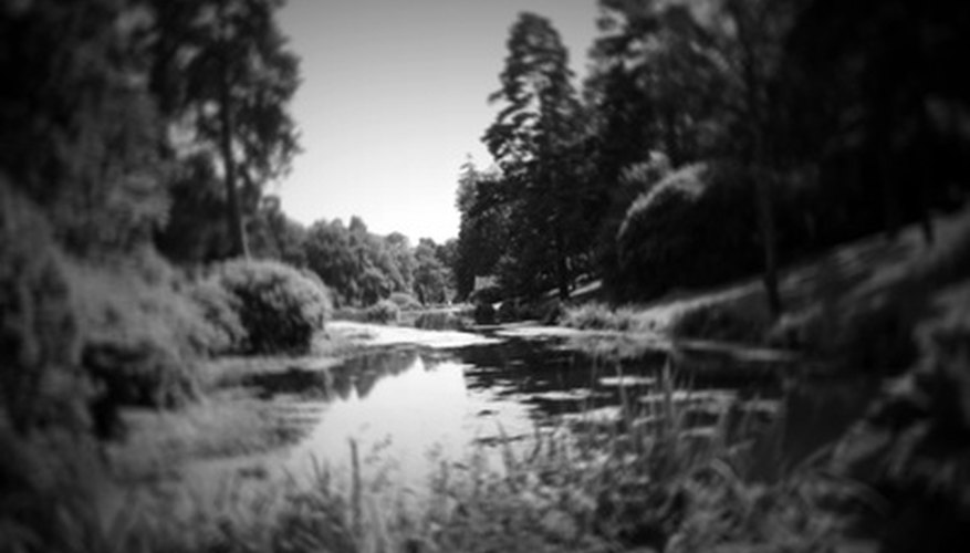 Pinhole photography allows for experimentation with depth and form.